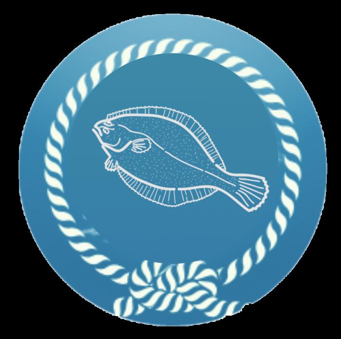 passie-voor-zeevissen-noordzee-700x697