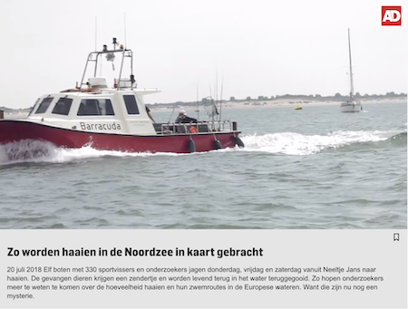 video over haaienvissen Noordzee