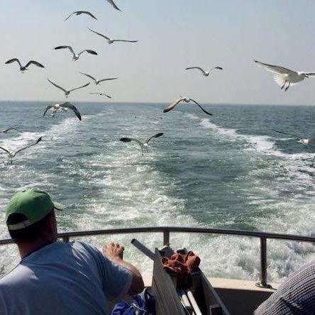dagje zeevissen noordzee