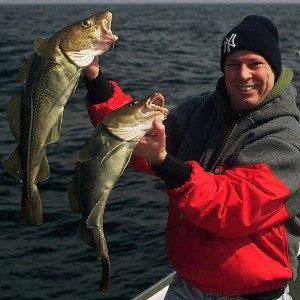 vangst na wrakvissen in zeeland